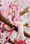 1girl :d black_legwear cherry cherry_blossoms flower food fruit hatsune_miku long_hair open_mouth pink_eyes pink_hair sakura_miku sitting smile solo spring_(season) thigh-highs twintails vocaloid yamako777