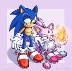blaze_the_cat blue_hair cat feline green_eyes hedgehog purple_hair sonic sonic_rush sonic_the_hedgehog yellow_eyes