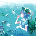 1girl backpack bag blue_eyes blue_hair bubble hair_bobbles hair_ornament hat kappa kawashiro_nitori nr_(cmnrr) profile shirt short_hair short_sleeves sitting skirt skirt_set touhou twintails underwater vest