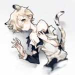 1boy animal_ears bare_shoulders duizhang gokotai kemonomimi_mode lying male_focus on_side tail tiger_ears tiger_tail torn_clothes touken_ranbu white_hair yellow_eyes
