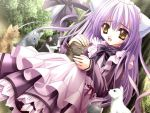amber_eyes bow cafe_little_wish cat dress hcg long_hair maid nekomimi purple_hair ribbon uniform