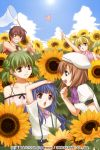 1boy 4girls beret blonde_hair blue_eyes blue_hair blush bow brown_eyes brown_hair butterfly butterfly_net clouds collarbone double_bun field flower flower_field furude_rika green_hair hand_net hat headband higurashi_no_naku_koro_ni houjou_satoko izumi_natsuka kimiyoshi_natsumi long_hair looking_at_another maebara_keiichi multiple_girls open_mouth ryuuguu_rena school_uniform short_hair sky smile sunflower sunlight suspenders