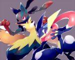 greninja lucario mega_lucario no_humans noni-nani pokemon pokemon_(creature) simple_background