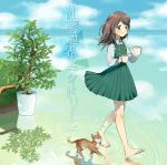 1girl animal barefoot blush brown_fur buttons cat character_request closed_mouth collared_shirt couch cup double-breasted dress full_body fur green_dress highres holding_cup jumper koyubi_right long_hair long_sleeves plant pleated_dress pointy_ears potted_plant reflection shirt sleeveless sleeveless_dress smile soles solo teapot text toes translation_request vocaloid walking walking_on_liquid water whiskers white_shirt wing_collar yellow_eyes
