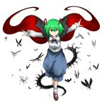>:) 1girl antennae black_cape blue_pants bobby_socks brown_shoes butterfly centipede dragonfly dress_shirt fireflies full_body green_eyes green_hair highres insect juliet_sleeves kan_(aaaaari35) long_sleeves looking_at_viewer mary_janes matching_hair/eyes outstretched_arms pants puffy_sleeves shirt shoes short_hair silhouette socks solo spread_arms touhou white_background white_legwear white_shirt wriggle_nightbug