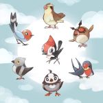 artist_request clouds fletchling hoothoot no_humans pidgey pidove pikipek pokemon pokemon_(game) starly tagme taillow