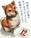 aaru_(tenrake_chaya) animal black_eyes brown_fur calendar_(object) closed_mouth dog from_above full_body looking_at_viewer no_humans number october shiba_inu sitting text translation_request whiskers white_fur