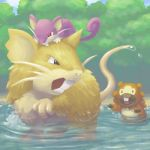 bidoof daphnia no_humans pokemon raticate rattata water