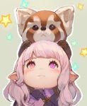 1girl animal animal_on_head blush final_fantasy final_fantasy_xiv heterochromia lalafell momoko_(momopoco) pointy_ears red_eyes red_panda solo star violet_eyes