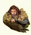1boy armor beard braids dwarf facial_hair fur king male_focus middle_earth scale_armor shield solo the_hobbit thorin_oakenshield vambraces
