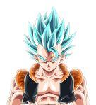 dragon_ball dragonball_z gogeta super_saiyan super_saiyan_god super_saiyan_god_ss
