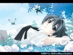 1girl androgynous antenna_hair arms_behind_head bangs black_eyes blue_hair bob_cut bomi butterfly clouds clover flower hits leaf letterboxed looking_at_viewer looking_back lying necktie on_back on_ground original outdoors school_uniform serafuku short_hair sky smile solo wallpaper