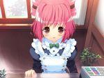 1girl apron blush bow game_cg hinata_yuuhi solo soshite_ashita_no_sekai_yori tagme ueda_ryou waitress