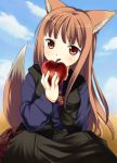 1girl animal_ears apple food fruit holding holding_fruit holo jimeko solo spice_and_wolf tail wolf_ears