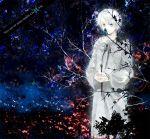1girl blue_eyes butterfly dress gown grey_hair kyouka_hatori kyoukahatori latin original silver_hair solo