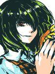 green_hair hair_over_one_eye holding holding_flower kazami_yuuka plaid_vest portrait red_eyes short_hair smile sunflower tima touhou