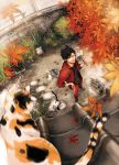 >:) 1boy animal autumn autumn_leaves black_hair blurry bucket bush calico cat chopsticks cooking depth_of_field falling_leaves fan fish fisheye flip-flops food from_above garden grass grill grilling ground gym_uniform haikyuu!! hair_between_eyes hand_on_hip holding holding_fan jacket kuroo_tetsurou legs_apart looking_at_viewer looking_up male_focus midoripurin outdoors pants paper_fan plant potted_plant red_jacket red_pants rooftop sandals shichirin shirt sleeves_pushed_up smile smoke standing t-shirt uchiwa wall