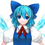 >:) blue_dress blue_eyes blue_hair blush bust cirno dress face pupps short_hair smile solo touhou wings