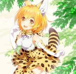 1girl :d animal_ears arm_at_side armpits bare_shoulders belt bow bowtie breasts brown_belt cat_ears cat_tail clenched_hands cross-laced_clothes elbow_gloves eyebrows_visible_through_hair eyelashes gloves hair_between_eyes hand_up kemono_friends light_brown_eyes looking_at_viewer medium_breasts open_mouth orange_hair outdoors paw_pose peco19peco plant sandstar serval_(kemono_friends) serval_ears serval_print serval_tail shiny shiny_hair shirt short_hair skirt sleeveless sleeveless_shirt smile solo striped_tail tail tareme teeth thigh-highs white_shirt wind zettai_ryouiki