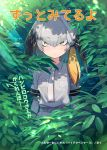 1girl bangs belt black_hair bodystocking bush dappled_sunlight expressionless eyebrows_visible_through_hair green_eyes grey_hair grey_shirt head_wings kemono_friends long_hair looking_at_viewer multicolored_hair necktie sanpaku shirt shoebill_(kemono_friends) short_sleeves side_ponytail solo sunlight tam-u text translation_request