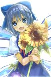 1girl :d blue_dress blue_eyes blue_hair bow cirno dress fang flower hair_bow hidden_star_in_four_seasons ice ice_wings looking_at_viewer minutachi open_mouth puffy_short_sleeves puffy_sleeves short_hair short_sleeves simple_background smile solo sunflower touhou white_background wings