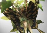 1girl antennae armpits arms_up blue_hair brown_eyes butterfly_wings dress etarnity_larva green_dress hair_between_eyes hair_ornament leaf leaf_hair_ornament looking_at_viewer no-kan short_hair sitting sleeveless sleeveless_dress solo touhou wings