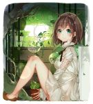 1girl antlers bangs bare_legs bars black_ribbon blush breasts broken broken_wall brown_hair brown_shoes cactus closed_mouth day dress eyebrows_visible_through_hair falling_leaves fingernails from_side full_body glass glint green_eyes highres holding holding_pot horns indoors key knees_up leaf lens_flare long_sleeves looking_at_viewer looking_to_the_side medium_breasts moss neck_ribbon original pebble pink_ribbon plant potted_plant ribbon roots sapling shelf shiny shiny_hair shoes short_dress short_hair sitting smile solo sparkle starpri sunlight tree vines water water_drop white_border white_dress wooden_wall