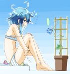 10s 1girl asymmetrical_hair azumaya_(miyui001) barefoot blue_background blue_eyes blue_flower blue_hair bra flower flower_pot flower_request from_side highres kantai_collection knees_up leg_hug looking_away messy_hair minazuki_(kantai_collection) morning_glory panties plant profile sad sandals sandals_removed sitting solo strap_slip striped striped_bra striped_panties trellis underwear underwear_only wavy_mouth