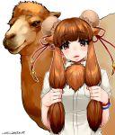 1girl animal_ears artist_name bactrian_camel_(kemono_friends) blush brown_eyes brown_hair camel camel_ears double_bun fur_trim happa_(cloverppd) kemono_friends long_hair open_mouth simple_background solo upper_body white_background