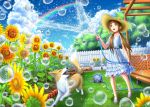 1girl animal ash_(bgash0207) backyard blush brown_eyes brown_hair bubble clouds detached_sleeves dog dress fence flower garden hair_flower hair_ornament hair_over_shoulder hat hose hose_reel long_hair looking_away looking_up no_socks open_mouth original outdoors picket_fence porch rainbow sandals sash sleeveless sleeveless_dress smile spraying standing straw_hat sundress sunflower sunflower_hair_ornament teeth trellis twintails water water_drop white_dress wooden_fence