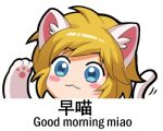 1boy animal_ears blonde_hair blue_eyes blush_stickers cat_ears cat_paws cat_tail chinese eyebrows_visible_through_hair link looking_at_viewer lowres paws shangguan_feiying short_hair smile solo tail the_legend_of_zelda the_legend_of_zelda:_breath_of_the_wild translation_request upper_body