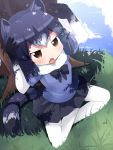 1girl :o animal_ears arms_up black_bow black_bowtie black_hair black_skirt blue_sky bow bowtie brown_eyes clouds commentary_request common_raccoon_(kemono_friends) day fang fur_collar gloves grass highres indian_style kemono_friends makuran multicolored multicolored_clothes multicolored_gloves multicolored_hair outdoors pantyhose raccoon_ears raccoon_tail short_hair sitting skirt sky solo striped_tail tail tree under_tree white_hair white_legwear