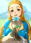 1girl :d bangs blonde_hair blue_sky blush braid day eyebrows fingerless_gloves french_braid gloves grass green_eyes hair_ornament hairclip half-closed_eyes highres looking_at_viewer open_mouth outdoors parted_bangs pointy_ears princess_zelda shiroinuchikusyo sky smile solo sparkle teeth the_legend_of_zelda the_legend_of_zelda:_breath_of_the_wild upper_body