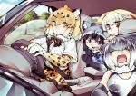 animal_ears black_hair blonde_hair bow bowtie car_interior common_raccoon_(kemono_friends) driving ears_down elbow_gloves fennec_(kemono_friends) fox_ears fur_collar gloves grey_hair highres jaguar_(kemono_friends) jaguar_ears kemono_friends multicolored_hair multiple_girls open_mouth otter_ears raccoon_ears shigurio short_hair short_sleeves skirt sleeping small-clawed_otter_(kemono_friends) steering_wheel vehicle