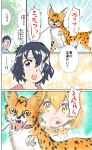 1boy 1girl animal_ears doctor injury kaban_(kemono_friends) kemono_friends serval_(kemono_friends) serval_ears serval_tail tail