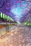 angelmaster arsenixc branch cherry_blossoms commentary_request day food fruit grass highres no_humans outdoors park path road scenery shadow tree tree_shade watermark