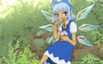 1girl blue_eyes blue_hair branch cirno commentary_request dress eating flower hair_ribbon ice ice_wings looking_at_viewer meimaru_inuchiyo ribbon shaved_ice short_hair solo sunflower tan tanned_cirno touhou wings