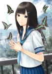 1girl black_eyes black_hair blurry blurry_background butterfly fingers_together hair_ornament hairclip hami_(hami-gerden) highres long_hair looking_at_viewer original outdoors railing school_uniform serafuku solo standing steepled_fingers uniform