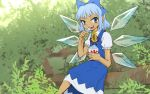 1girl blue_eyes blue_hair branch cirno dress eating flower hair_ribbon ice ice_wings looking_at_viewer meimaru_inuchiyo ribbon shaved_ice short_hair solo sunflower tan tanned_cirno touhou wings