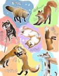 :3 absurdres angry animal belt_collar cat closed_eyes collar colorful commentary_request dog doitsuken drying fox heart highres leash looking_at_another looking_at_viewer lying on_back one_eye_closed open_mouth out_of_frame shaking shiba_inu sleeping stretch stuck translation_request upside-down