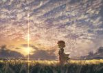 aki_minoriko autumn berabou blonde_hair clouds cloudy_sky dress food fruit grapes hat looking_to_the_side puffy_sleeves red_eyes red_hat short_hair sky sunset touhou wind
