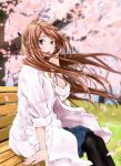 1girl amakasu_an bench blurry blurry_background brown_hair cherry_blossoms highres labcoat long_hair mori_taishi official_art pantyhose radiation_house wavy_hair