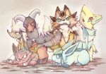 furfrou glaceon houndoom lycanroc manectric pokemon torracat