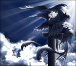 1girl animalization bird clouds cloudy_sky cross highres light_rays multiple_wings red_eyes sariel skudde sky touhou touhou_(pc-98) wings