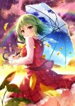 blush frills green_hair kazami_yuuka leaves miyase_mahiro petals rainbow red_eyes short_hair skirt touhou umbrella