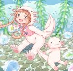 1girl :3 :d air_bubble animal animal_costume axolotl axolotl_costume bangs blunt_bangs bow brown_eyes brown_hair bubble commentary_request gum_(vivid_garden) hood ichihara_nina idolmaster idolmaster_cinderella_girls long_hair looking_at_viewer open_mouth outstretched_arms seaweed smile spread_arms underwear