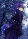 1girl bangs blue_eyes breasts coat commentary_request dutch_angle eyebrows_visible_through_hair full_moon gloves hair_between_eyes hair_intakes heterochromia highres long_hair long_sleeves looking_at_viewer looking_back moon murasame_shia night night_sky original outdoors parted_lips purple_coat purple_gloves sky small_breasts snow snowing solo tail yellow_eyes