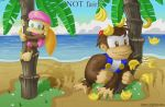 1boy 1girl animal banana beach blonde_hair brown_eyes button chunky_kong clouds deviantart dixie_kong donkey_kong_(series) flower fruit gorilla grass green_eyes hat jacket kjsteroids monkey nintendo no_humans palmtree pink_shirt rareware sand sky twintails water white_shirt