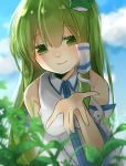1girl blush detached_sleeves frog green_eyes green_hair green_leaves hair_accessories kochiya_sanae leaves long_hair okakaeba open_hand plants smile snake touhou