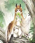 1girl black_eyes brown_hair claws commentary_request creature day feathered_wings flower forest fur_collar harpy highres jewelry leaf looking_at_viewer monster_girl mouth_hold nature necklace outdoors owl_girl pixiv_fantasia pixiv_fantasia_new_world short_hair solo tree ttk_(ehohmaki) winged_arms wings x_x
